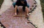 Как класть тротуарную плитку, чтобы земля не уходила из-под ног?