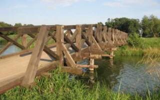 Водяной мостик, или как преодолеть ручей посуху?